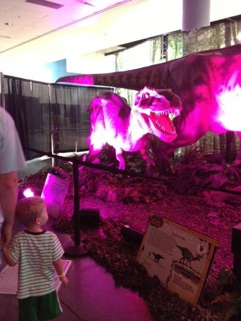 Dino show 3