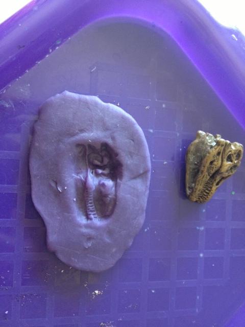 playdoh fossil 2