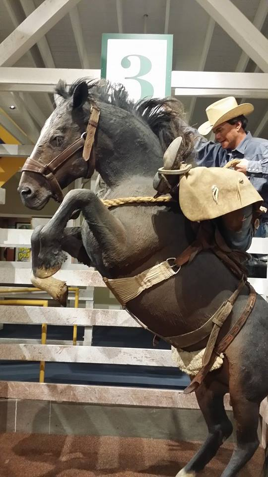 National Cowboy and Western Heritage Museum - OK City