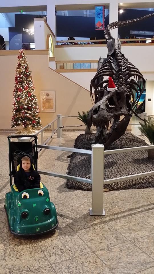 NM Natural History Museum