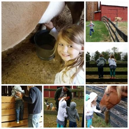 wpid-visit-farm.jpg.jpeg